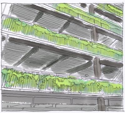 壁面緑化自走式立体駐車場